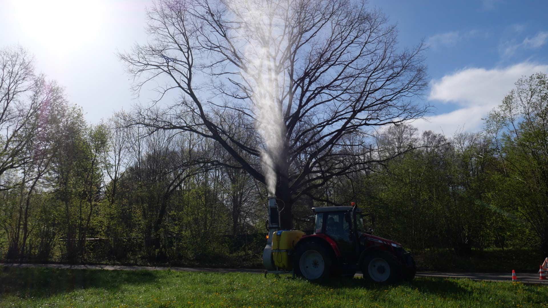 Ein Baum wird von Fleschhut gegen Eichenprozessionsspinner behandelt